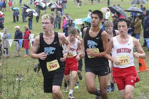 a picture of cross country runners